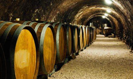 Pour faire fructifier son argent grâce au vin