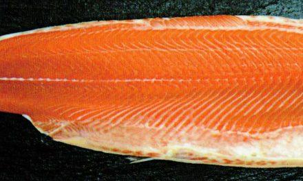 Comment cuire un saumon entier ?