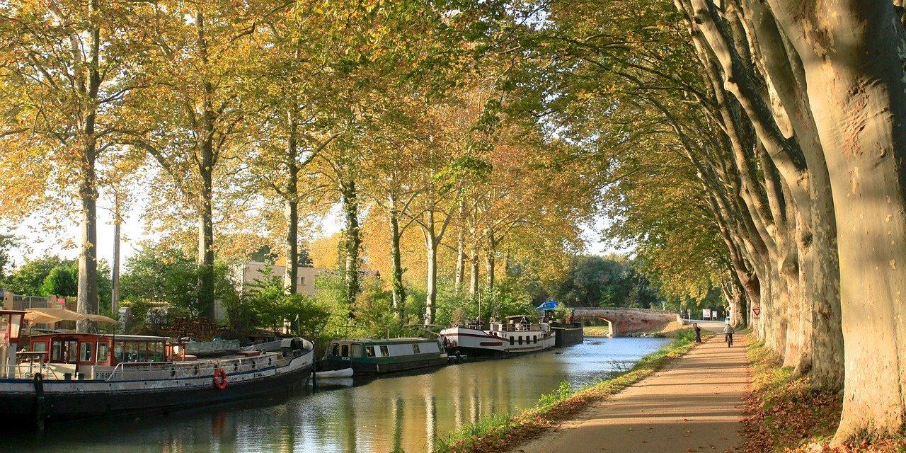 Où trouver un wedding planner sur Toulouse ?