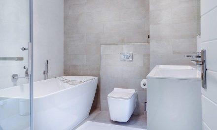 Comment bien choisir ses toilettes japonaise ?